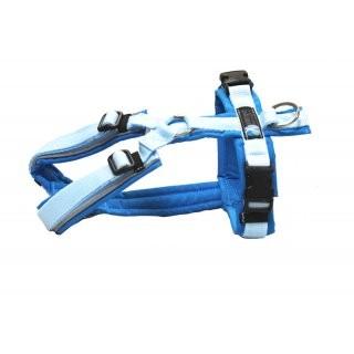 anny x Brustgeschirr FUN reflectiv lichtblau/hellblau Limited Edition