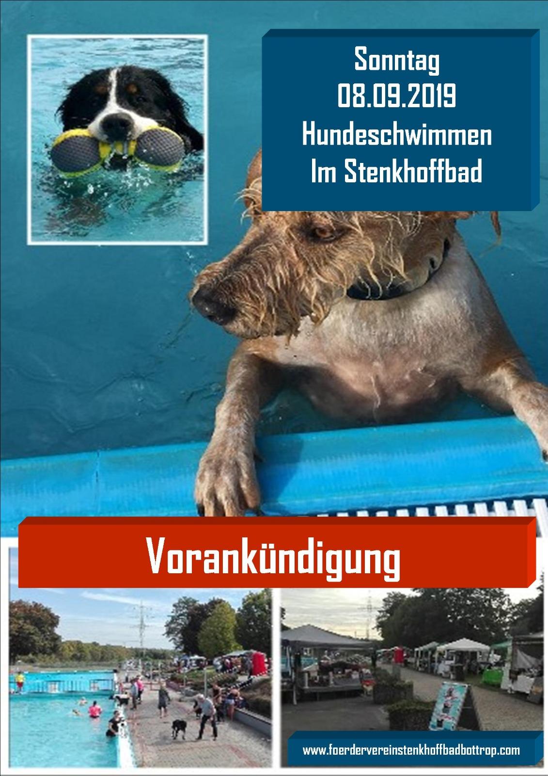 Hundeschwimmen-Stenckhoffbad-2019