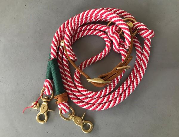 PPM- Weihnachtsleine mit Halsband